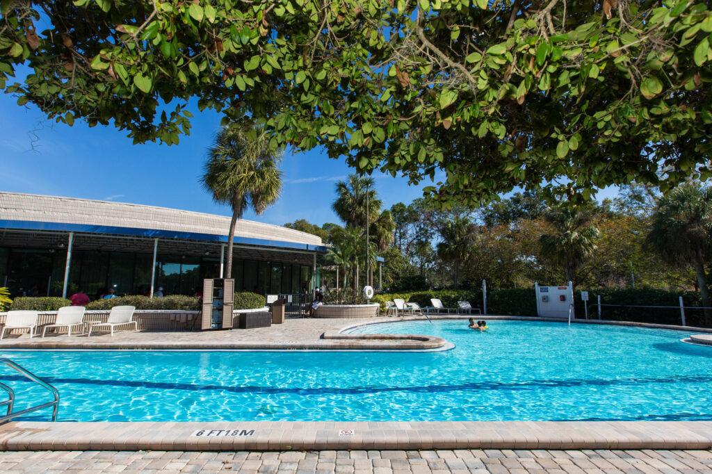 The Pool at the Sheraton Tampa Brandon Hotel