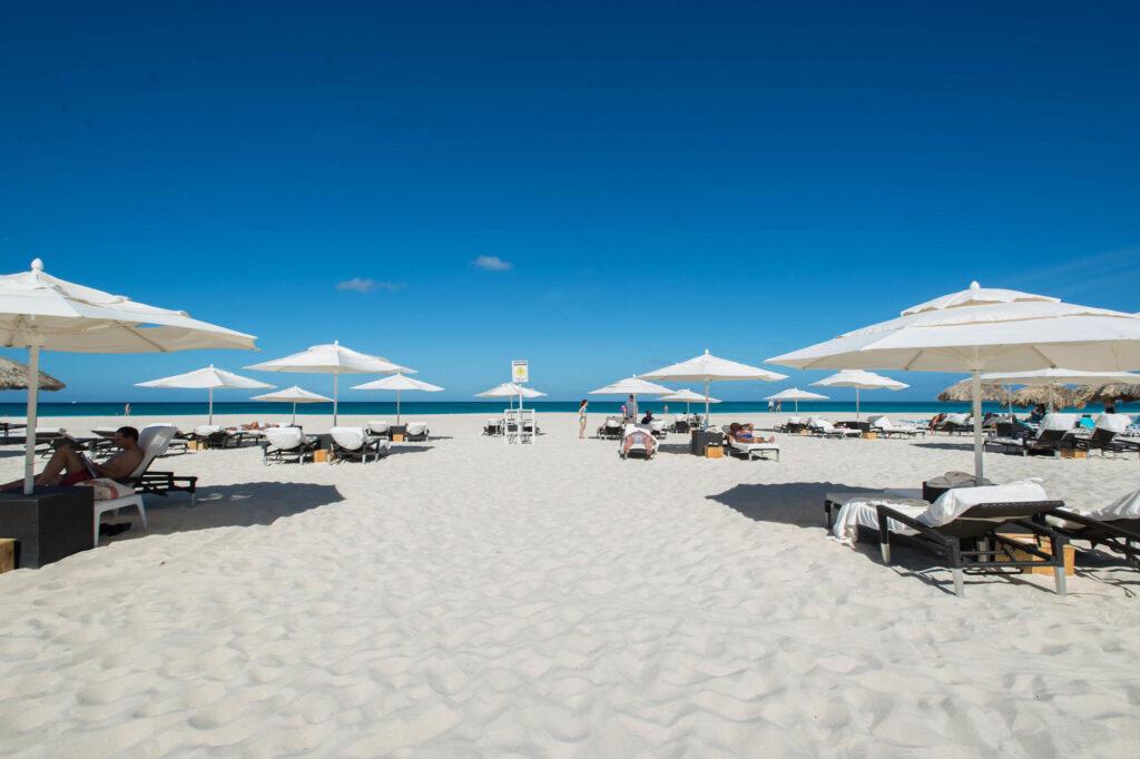 Beach at the Bucuti & Tara Beach Resort Aruba