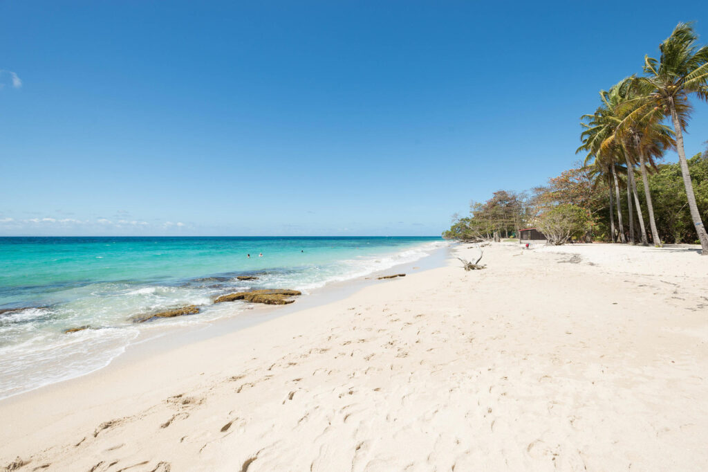 Beach at the Residence Hoteliere Les Cayalines