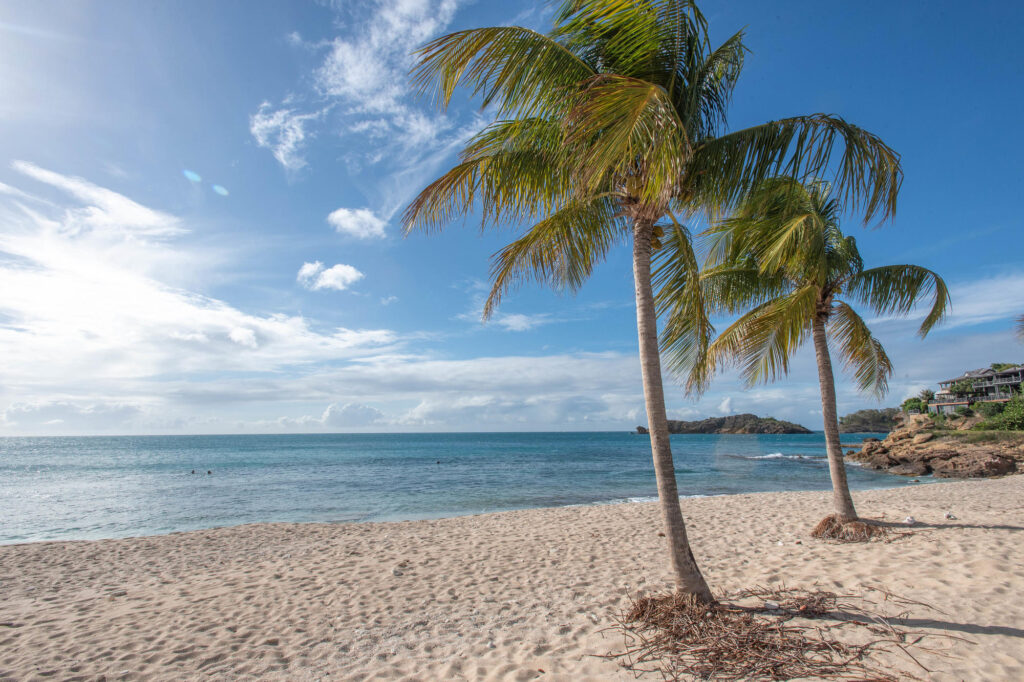 Beach at the Galley Bay Resort & Spa
