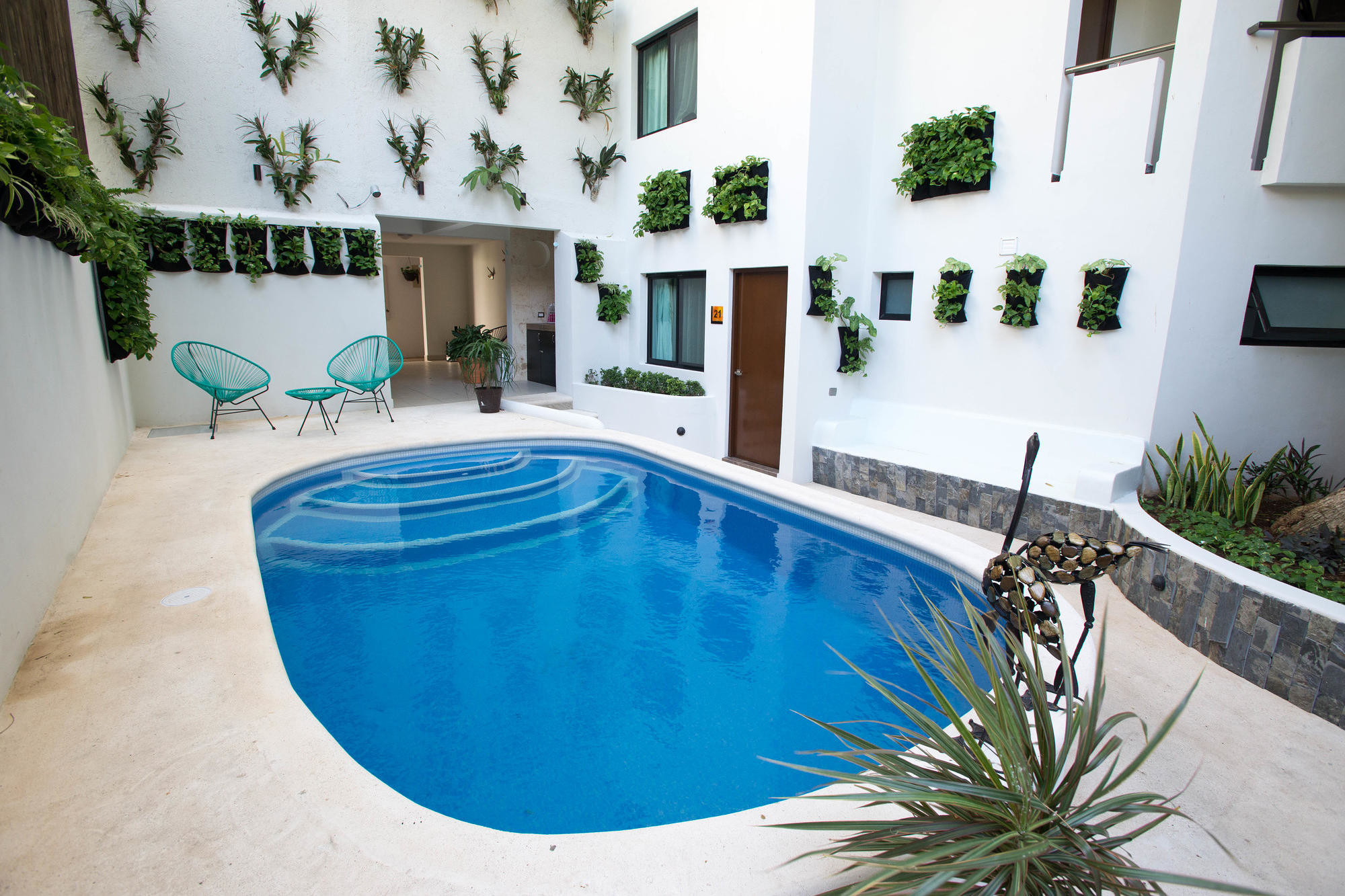 One of the Pools at Casa Ticul in Playa del Carmen/Oyster
