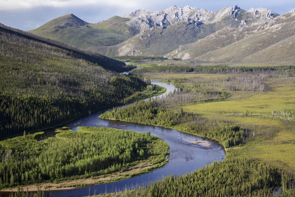 White Mountains National Recreational Area