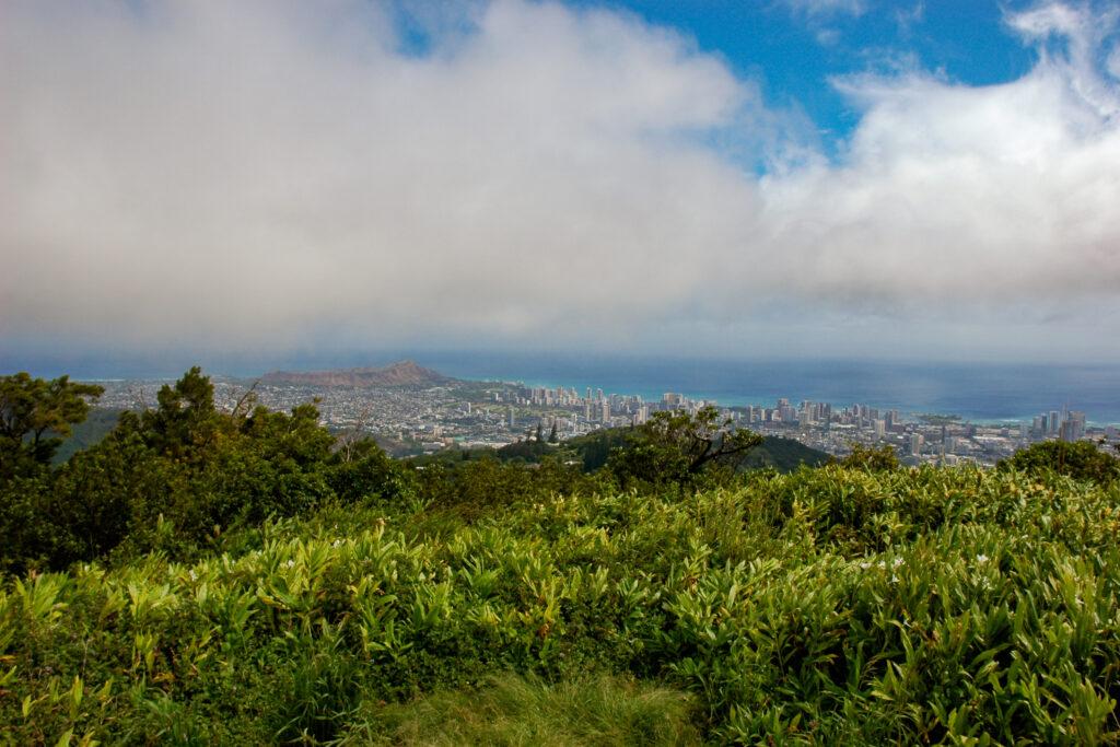 View from Mount Tantalus, Honolulu, Hawai'i
