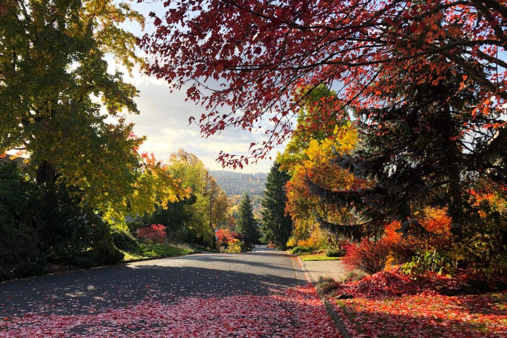 Eugene, OR, USA